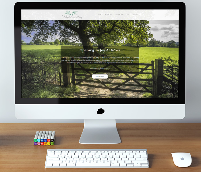 Fieldgate Consulting Website Design